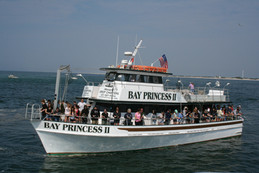 Bay Princess Captree Private Charter 100 Passengers