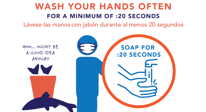 Captree Fishing COVID-19 Safety Hygiene and Hand Washing