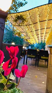 Zu den Linden Radebeul | restaurants in radebeul | essen in radebeul | hotels radebeul | übernachten in radebeul