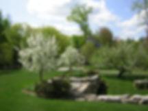 Roberts spring.JPG