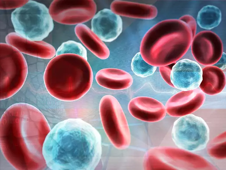 Sabe o que é o Hemograma?