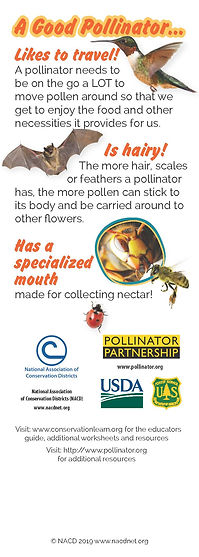 Pollinators_bookmark_no_bleeds_Page_2.jp