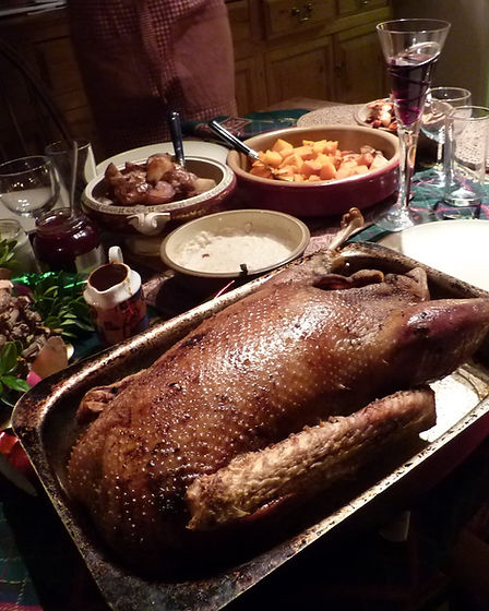 Cooked goose 2.jpg
