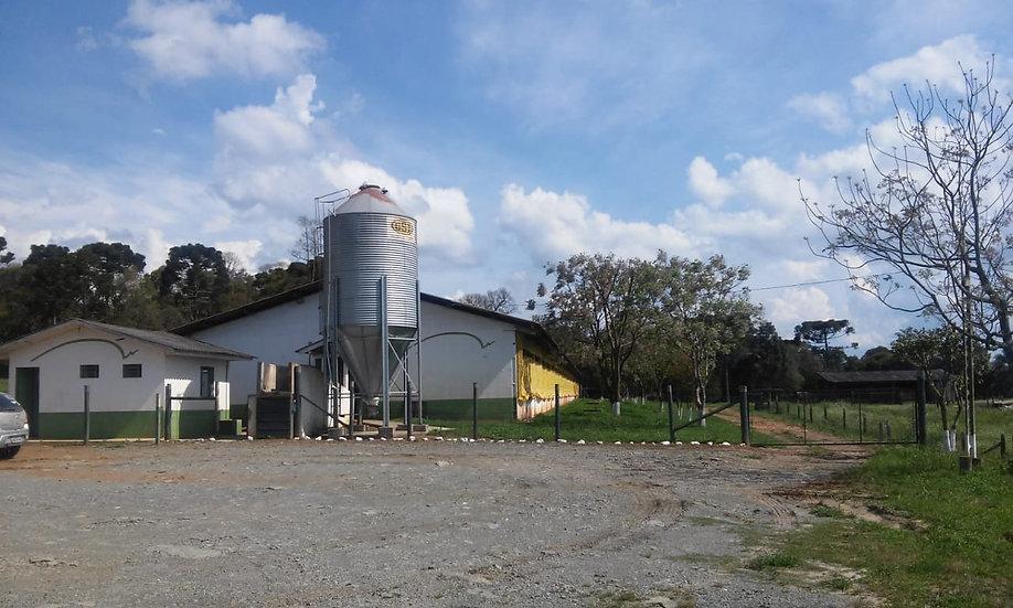 Rural 38 alqueires | Taquaral | Monte Castelo | SC