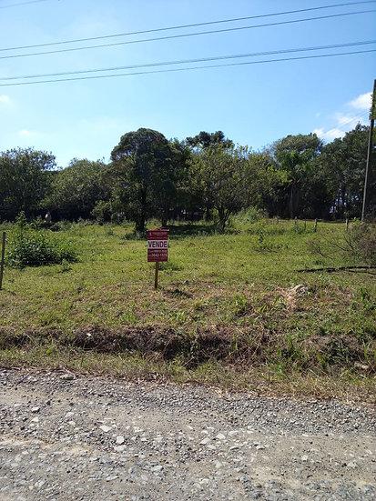 Terreno Urbano|Vila Nova   | Mafra | SC