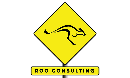 Danger Roo Consulting.png