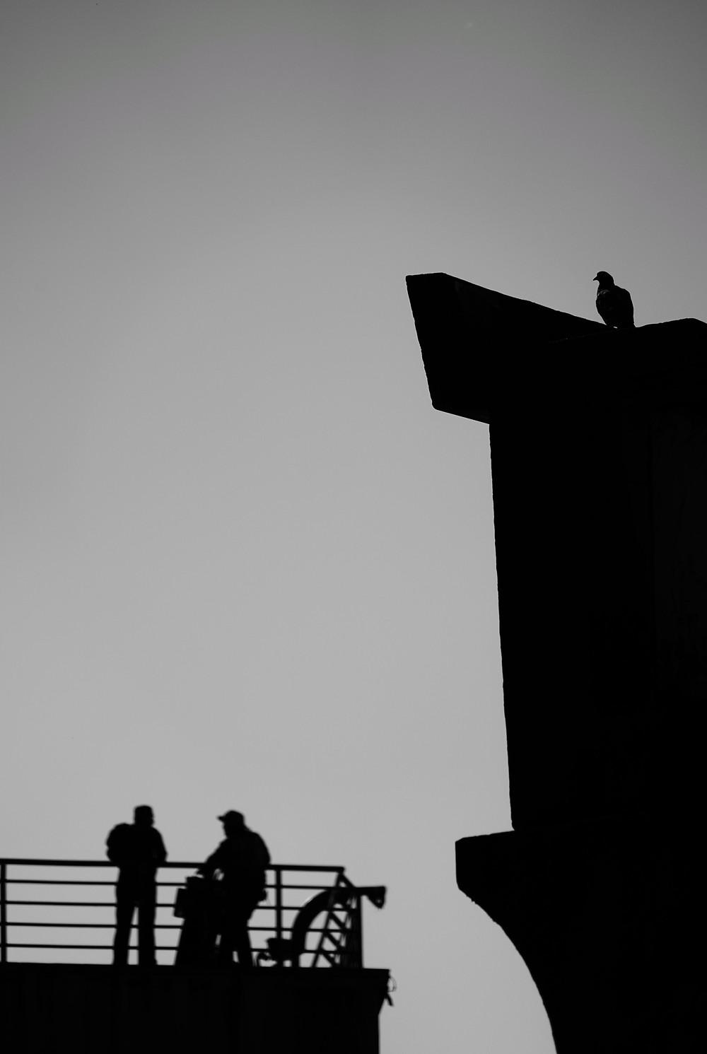Fabio Petry winning photography