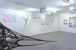 Reticulum exhibition