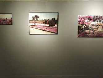New Exhibition of Zakaria Wakrim
