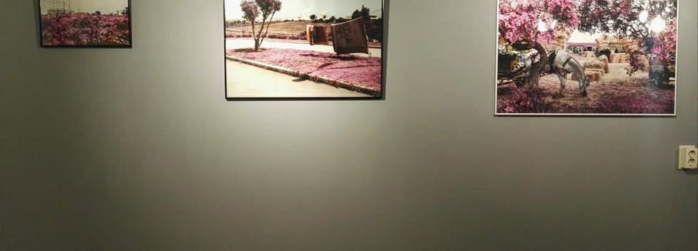 Zakaria Wakrim Exhibition
