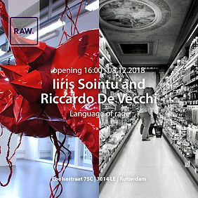 Language of Rage, duo exhibition of Iiris Sointu and Riccardo de Vecchi