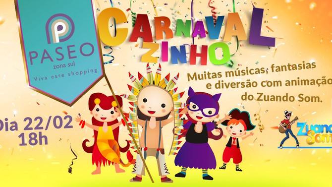 Zuando Som no Carnaval!