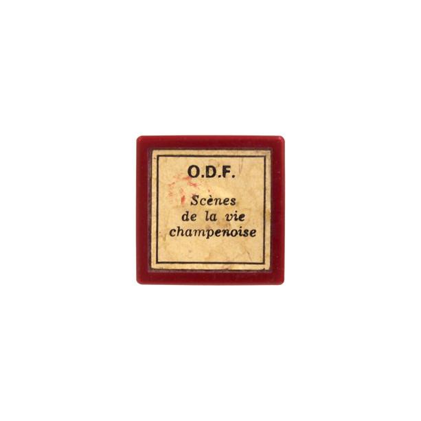 Film éducatif de l'ODF sur la vie champenoise