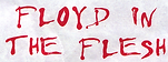 Floyd in the Flesh_20210911_0001.tif