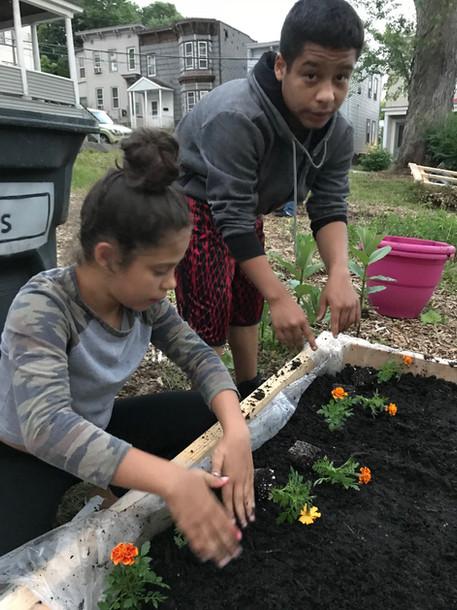 Family planting marigolds