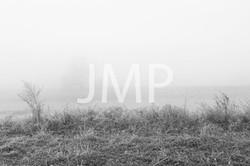 Nebel_2014_06