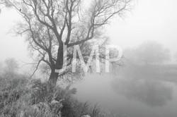 Nebel_2014_05