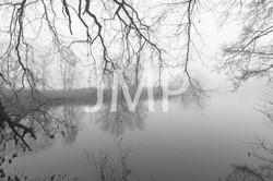 Nebel_2014_30