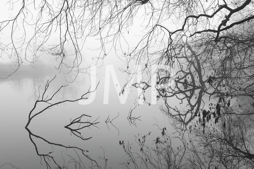 Nebel_2014_32