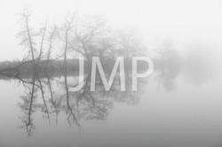 Nebel_2014_29