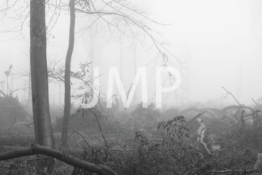 Nebel_2014_17