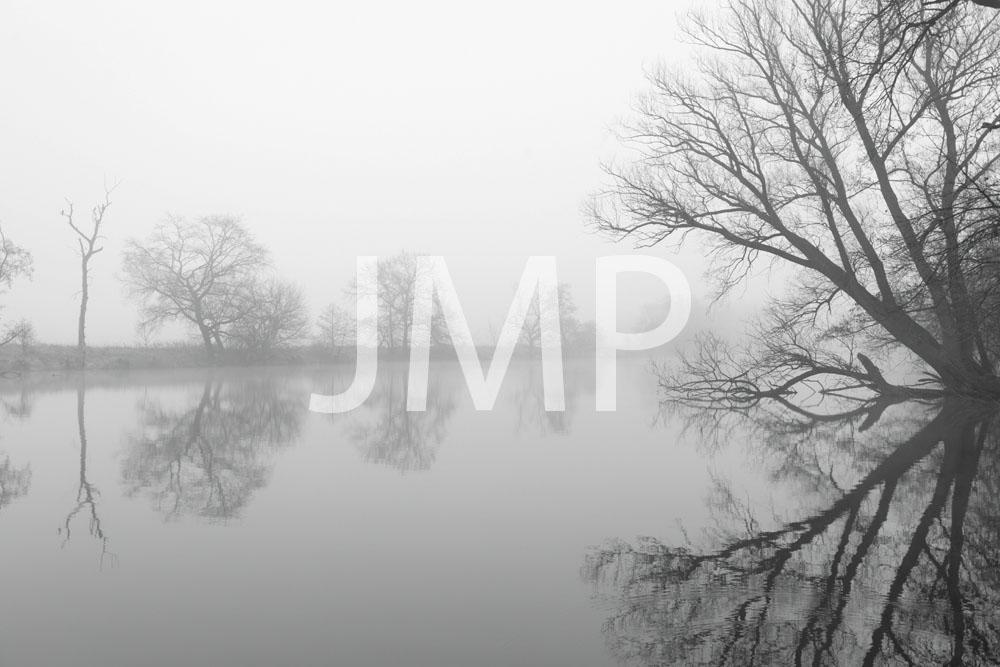 Nebel_2014_33