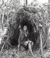 australian, artist, amanda forward, outback, bush, artist