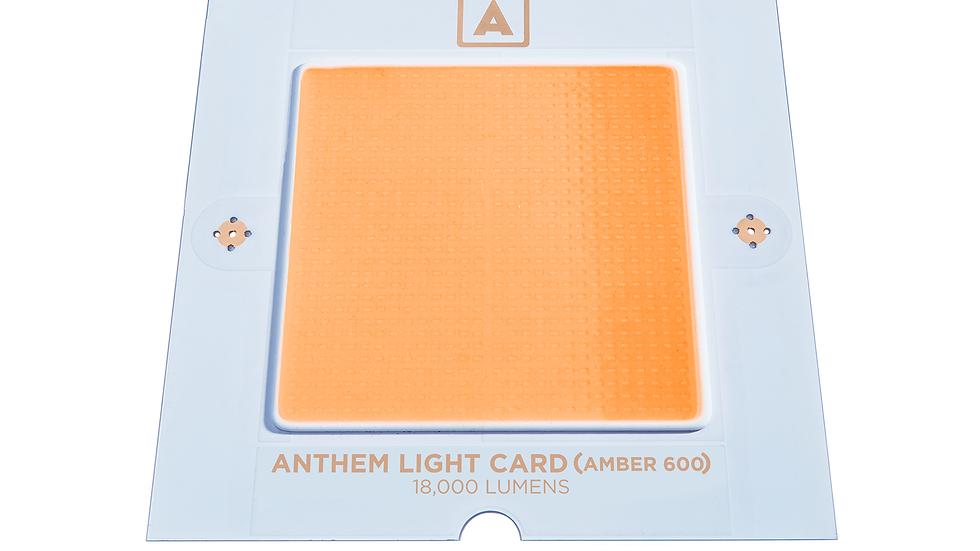 Anthem Light Card (Amber 600)