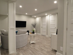 Contemporary basement reno