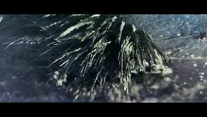 Corona_FilmStill005.png