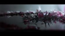 Corona_FilmStill007.png