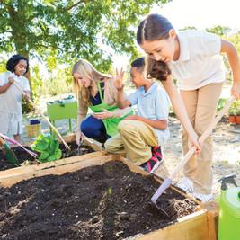 L'espace jardinage