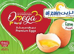 Omega eggs 27-02-19-03.jpg