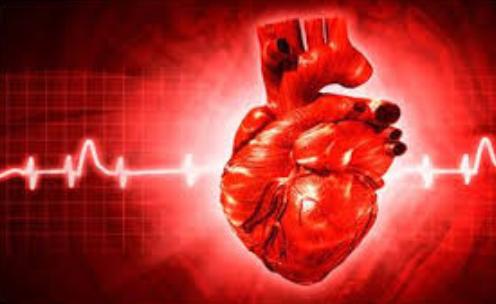 Volumen máximo de oxígeno ¿Nos previene de la mortalidad?