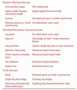 Selección de ejercicios de fuerza.