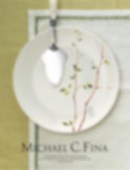 Michael C Fina Ad2.jpg