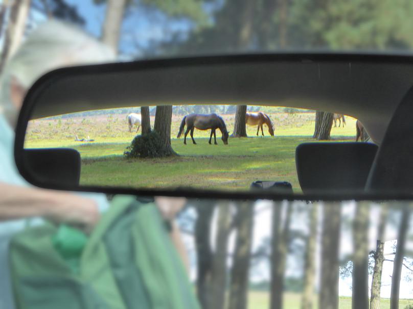 Check rear mirror before reversing
