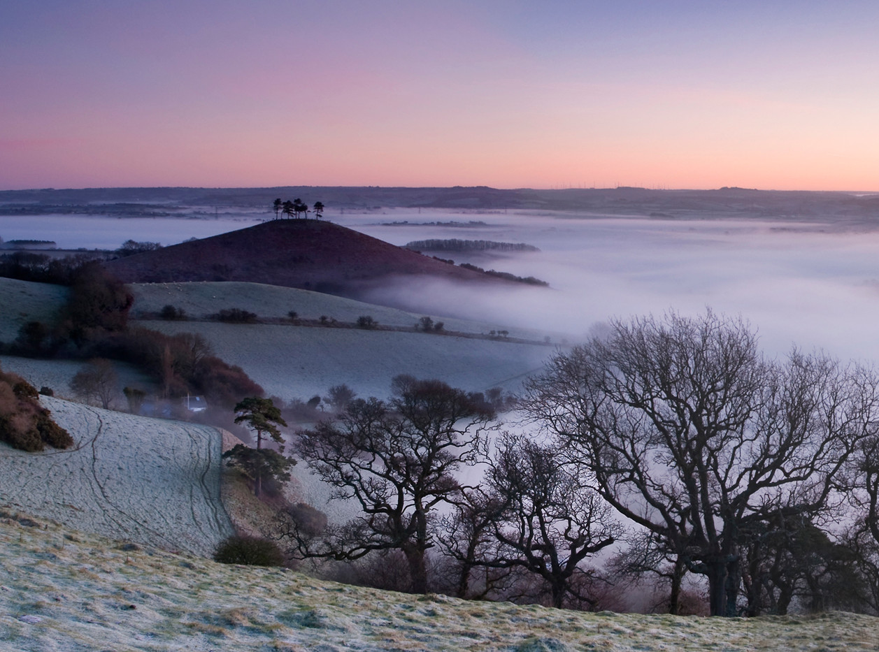Morning mists over Colmers Hill