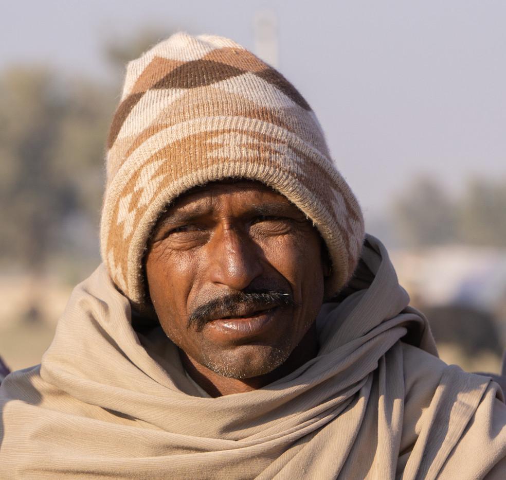 Camel Dealer