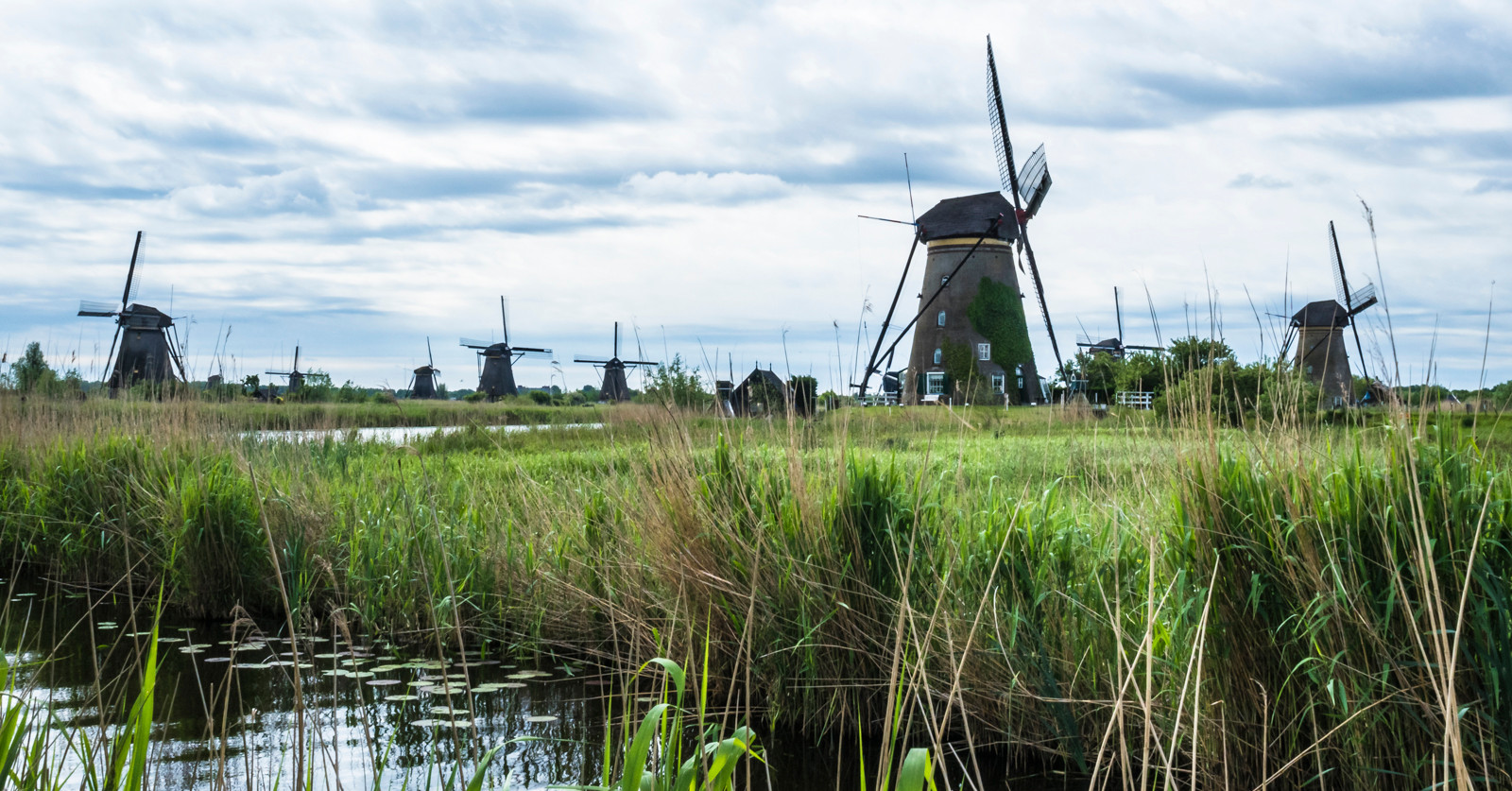 Windmills and Polders