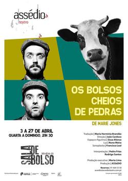 OS BOLSOS CHEIOS DE PEDRAS (2013)