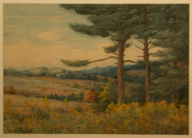 Mountain Meadow in Spring.jpg