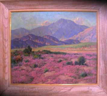 Desert Verbena