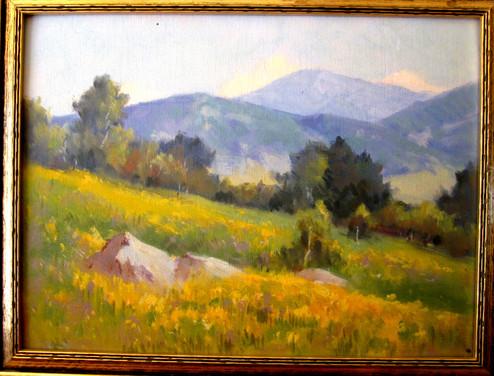 Southern Callifornia Landscape.jpg