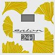 Salon 241 Logo.jpg