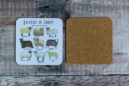 Coaster - Breeds of Sheep