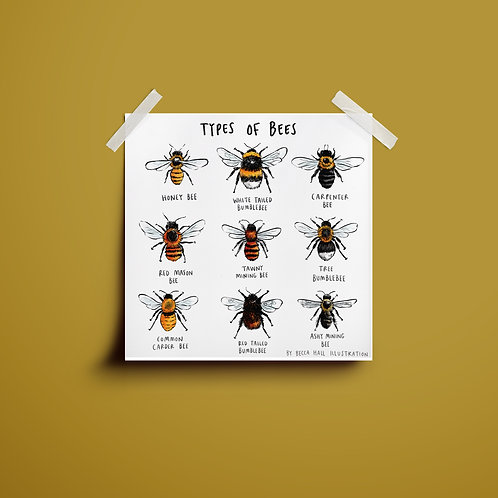 Print - Types of Bees