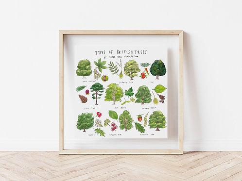 Print - Types of British Trees