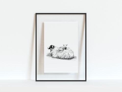 Print - Sheep & Lamb A4