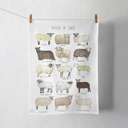 Tea Towel - Breeds of Sheep